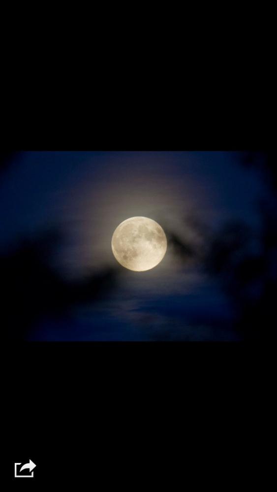 The Harvest Moon (1/2)